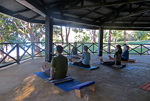 Ananda Yoga Postures in the yoga hall