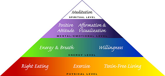 Ananda Radiant Health Training Pyramid