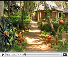 Ayurvedic Healing Retreat Video