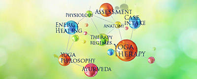 Ananda Yoga® Therapy Training: Principles