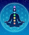 The Chakras: Inner Guide to Self-Realization