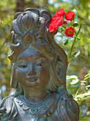 A statue of Quan Yin surrounded by roses