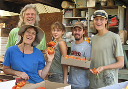 Ananda Organic Farm Apprentices