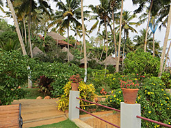 Resort grounds for you to enjoy in Kerala, India