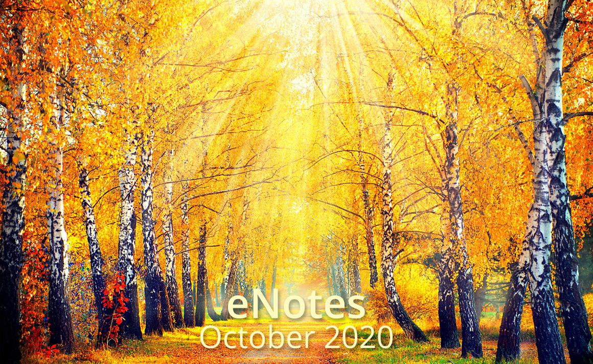 The Expanding Light Retreat, Northern California Newsletter banner