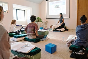 Restorative Ananda Yoga Teacher Training