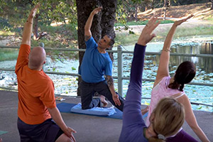 Ananda Yoga<sup>®</sup><br>     Retreats