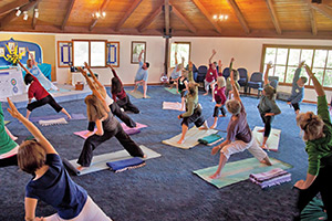 >Ananda Yoga<sup>®</sup><br>     Certificate Trainings