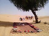 Desert meditation scene