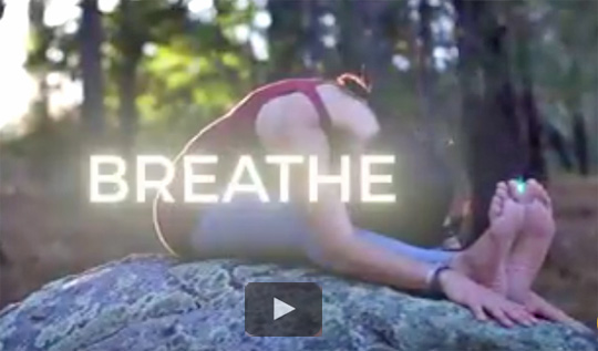 Yoga in Nature with Vahini-Om Video