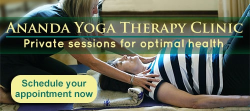 Yoga Therapy Clinic - Make an appointment button