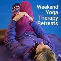 Yoga Therapy Retreats icon