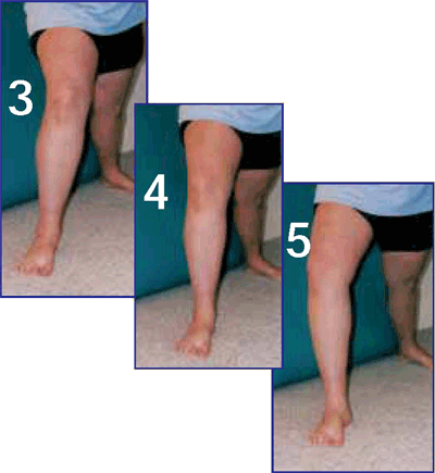 Great Knee Quiz 1 and 2
